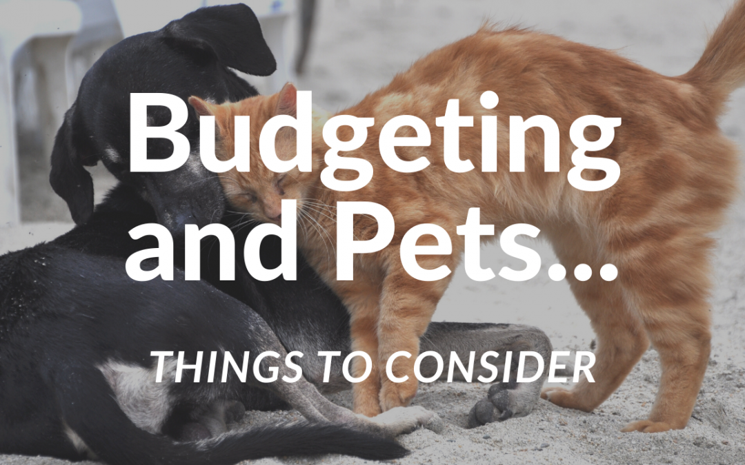 Budgeting and Pets